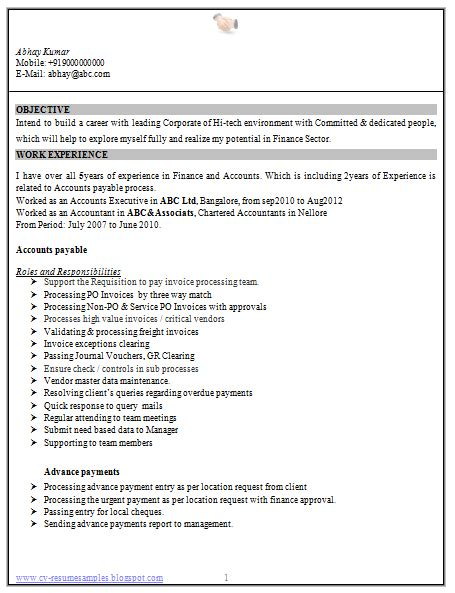 Experienced Accountant Resume by Professional Curriculum Vitae Resume Template For All