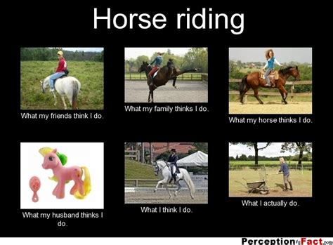 Horse Riding Meme - horse riding what people think i do what i really do perception vs fact