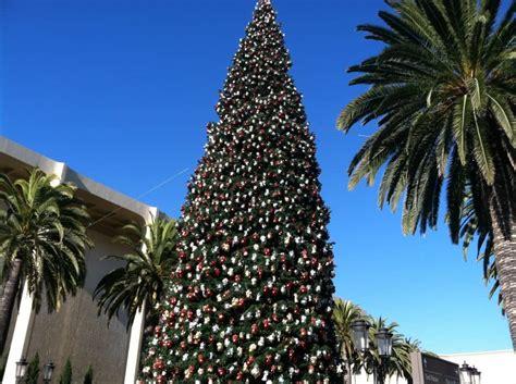 christmas light up in fashion island in newport fashion island tree