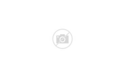 Desert Sand Sunset Bushes Hills Widescreen 4k