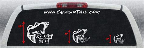 Chasin' Tail Fish Vinyl Decal