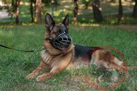 german shepherd wire muzzle wire basket dog muzzle  wire basket dog muzzle german