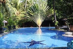 la vegetation autour de la piscine piscine With quelle plante autour d une piscine 3 quelle vegetation autour de la piscine