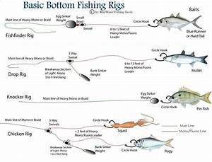 110 Best Surf Perch And Surf Fishing Images On Pinterest