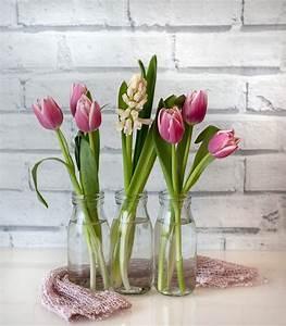 Tulpen In Vase : tulpe vase blume kostenloses foto auf pixabay ~ Orissabook.com Haus und Dekorationen