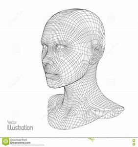 Head Of The Person From A 3d Grid  Human Wire Model