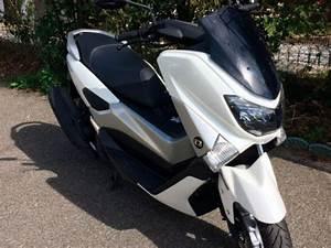 Permis Scooter 500 : cyclo scooter auto cole geca permis auto permis moto bayonne et urt ~ Medecine-chirurgie-esthetiques.com Avis de Voitures
