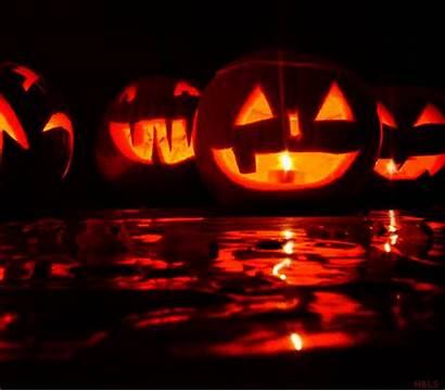 Lantern Jack Halloween Pumpkins Gifs Scary Giphy