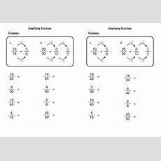 New 741 Fraction Worksheet Tes  Fraction Worksheet