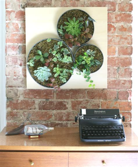 Vertical Succulent Garden Indoor by 16 Diy Wall Planters Teach You How To Greenify Your Home