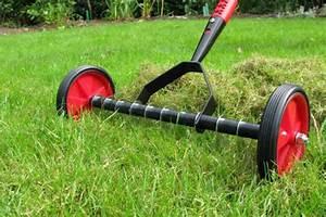 Lawn Scarifier - Buy Best Price Lawn Scarifiers Online in