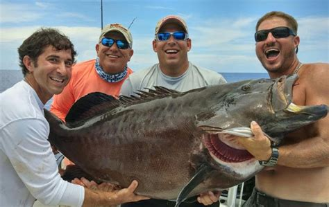 grouper fishing fish record florida caught largest tackle catch box cnn super catches
