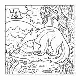 Anteater Coloring Letter Colorless Illustration Animal Pages Games Toy Aardvark Alphabet Theater Template Facts Educational Xenops Sheets Children Sheet Dreamstime sketch template