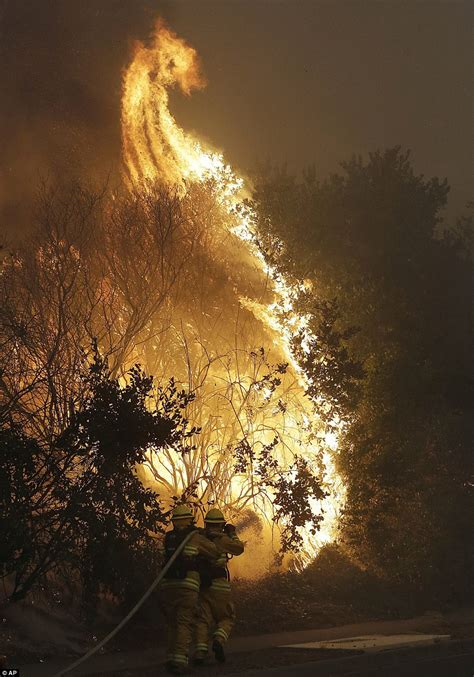 California wildfires torch homes in Wine Country   Daily ...