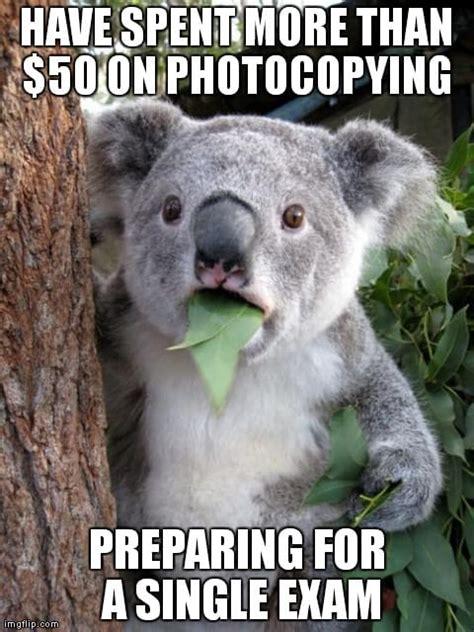 top  funniest college memes  custom writingorg