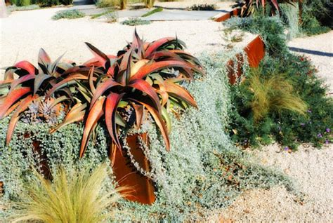 simple modern xeriscaping ideas   outdoor space