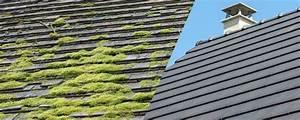 Prix demoussage toiture : tarifs pour la réalisation d'un