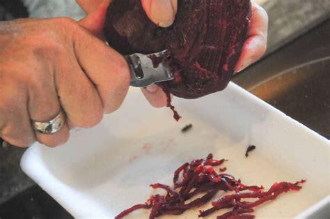 cuisiner le bar cuisiner le loup de mer 28 images 50 recettes entre
