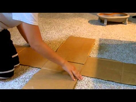 how to make a tech deck r out of cardboard youtube