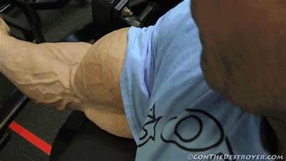 Biceps Bigger Even Building