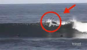 Real Scary Sharks Attacks