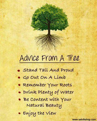 Going From Advice by Advice From A Tree Hemmahemma