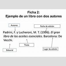Ejemplo De Una Ficha Bibliografica Newhairstylesformen2014com
