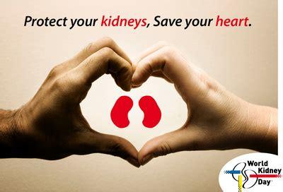 ovi magazine world kidney day   ovi team