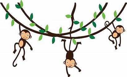 Monkey Clipart Hanging Monkeys Transparent Vine Clip