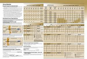 Easton Archery Arrow Selection Chart Pictures To Pin On