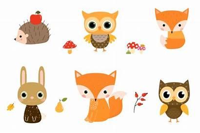 Woodland Clipart Hedgehog Animal Owl Fox Forest