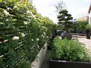 Plantes Grimpantes Pot Pour Terrasse : conseils pratiques garden sweet garden page 2 ~ Premium-room.com Idées de Décoration