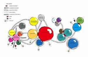 Bubble Diagram By Maria Nguyen