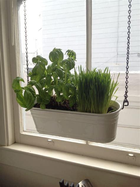 Window Herb Garden by 23 Best Herb Garden Images By Julie Clark On