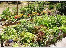 Raisedbed gardening Wikipedia