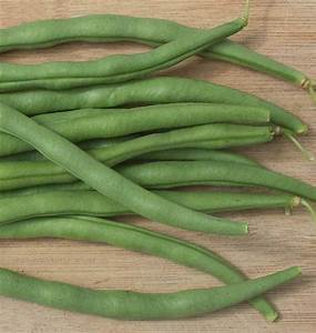 Matilda Pole Bean Seeds  U2013 West Coast Seeds