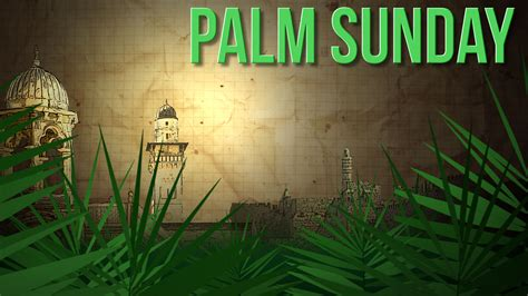 Happy Palm Sunday 2020 Whatsapp Status Dp fb Profile Cover ...