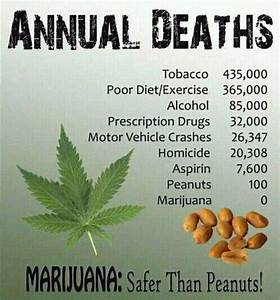 long term side effects of marijuanas