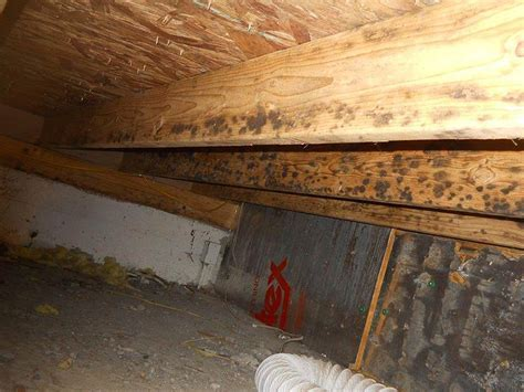 Crawl Space Encapsulation Services in Worland, Cody, and