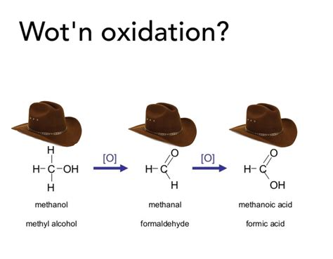 Wot In Tarnation Memes - wot in oxidation what in tarnation know your meme
