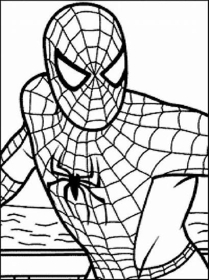 Coloring Pages Spider Spiderman Printable Boys