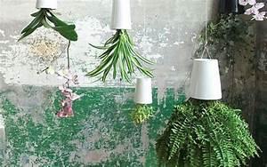 Boskke Sky Planter : 10 best plant pots mad about the house ~ Orissabook.com Haus und Dekorationen