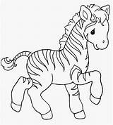Zebra Coloring Pages Animal Colouring Precious Zebras Ausmalbilder Malvorlagen Templates Template Printable Cheetah Sweet Getdrawings Moment Colorings Clipart Besuchen Getcolorings sketch template