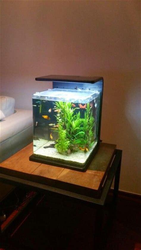 aquarium achat