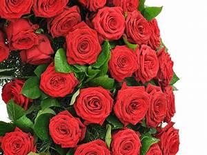 Hornspäne Für Rosen : kranz rote rosen f tschl blumen wien g rtnerei wien trauerfloristik kr nze buketts ~ Eleganceandgraceweddings.com Haus und Dekorationen