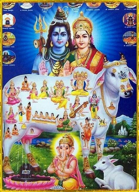all sweet dreams and blessings for us all thank you lord bhagwan ishq
