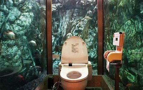 Top Coolest And Funniest Toilets
