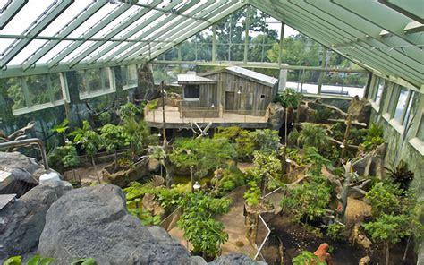 home design alternatives tropical forest in buffalo york structurflex
