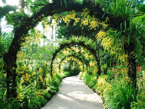 singapore botanic gardens singapore botanic gardens singapore singapore activity