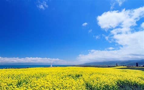 唯美青海湖风景屏保壁纸_高清桌面壁纸 - 精品壁纸站